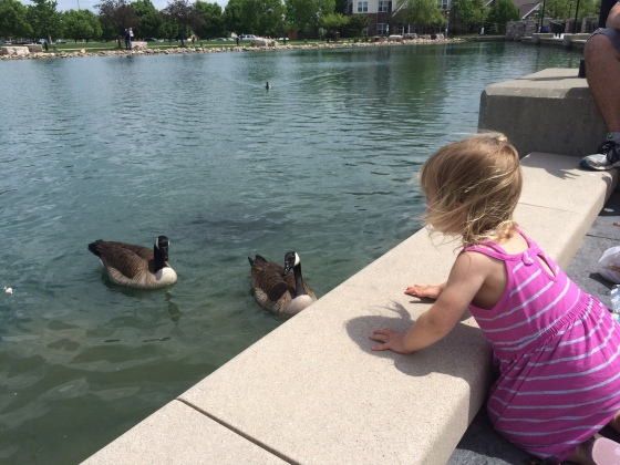 feeding the ducks...this was right before she got bit!